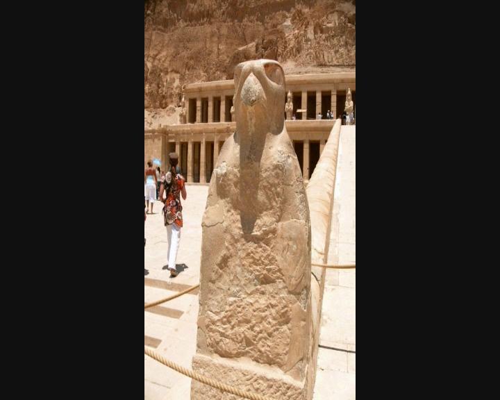Voyage en Egypte Vts_0138