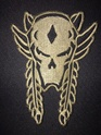 Winged Skull Patch Img_5710