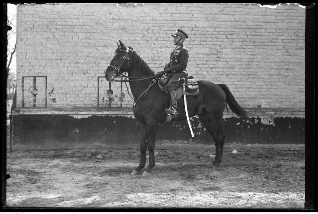 Sabre Polonais de Cavalerie 1921 Narcyz10