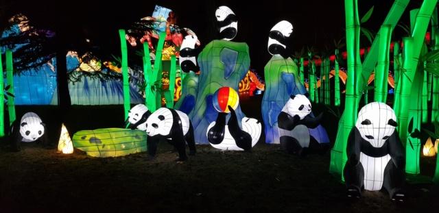 [Autres voyages/France] Escapade au festival des lanternes  20181221