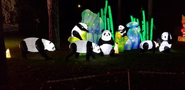 [Autres voyages/France] Escapade au festival des lanternes  20181222