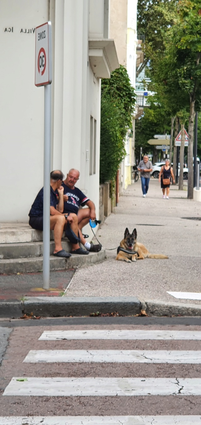 [Autres voyages/France]  Balade Alsacienne  20210295