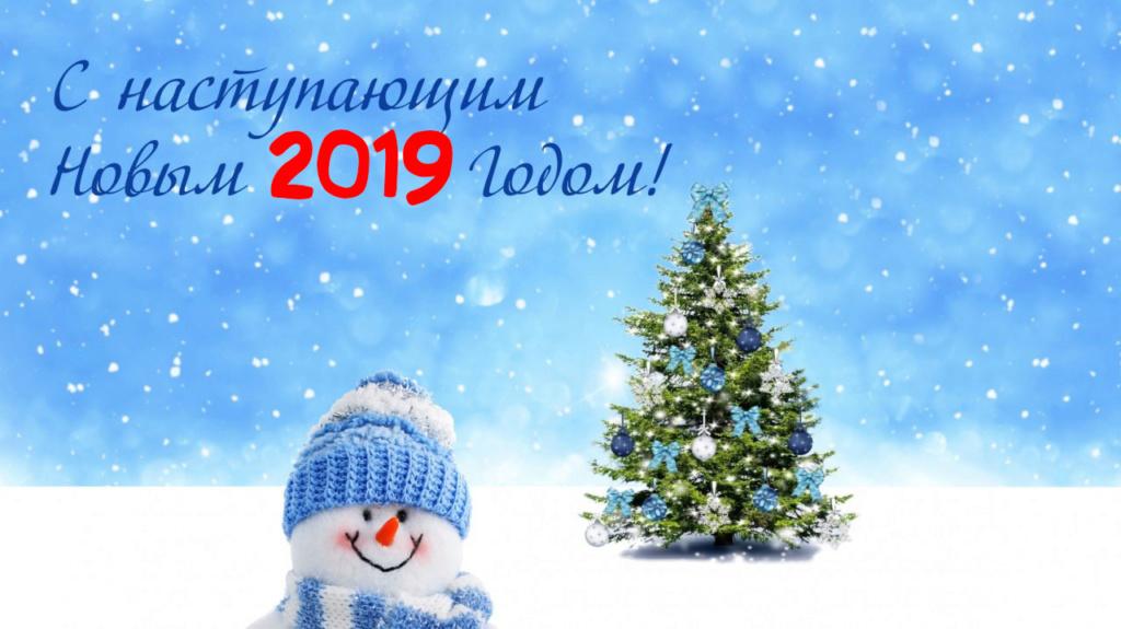 С Новым 2019 годом! 201911
