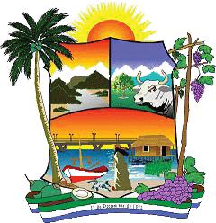 Venezuela Caos del Caribe palmera relacion entre 2 psicos Mara10