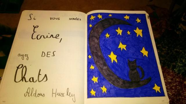 Je bujo, tu bujos, nous bujons. Le fil du bullet journal - Page 14 Wp_20138
