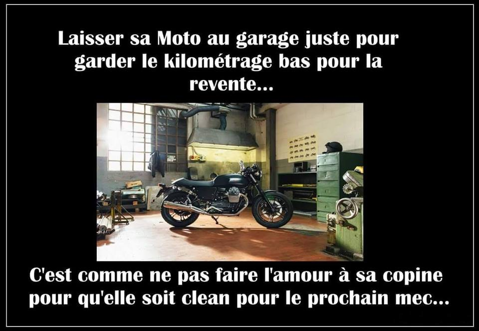 Humour en image du Forum Passion-Harley  ... - Page 4 40513910