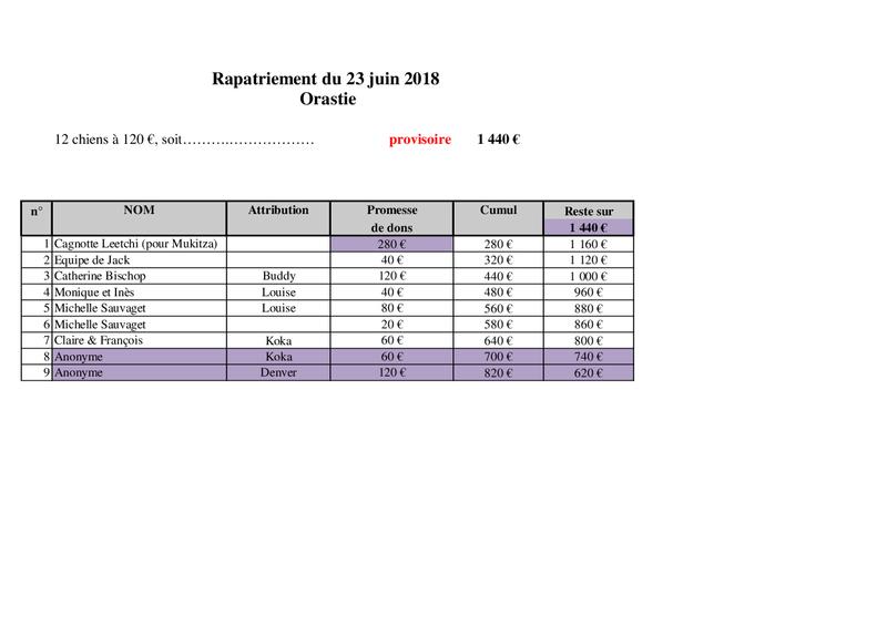 TRANSPORT CAMION ORASTIE ROUMANIE -Arrivée LIEGE le samedi 23 JUIN 2018 - Rapatr12