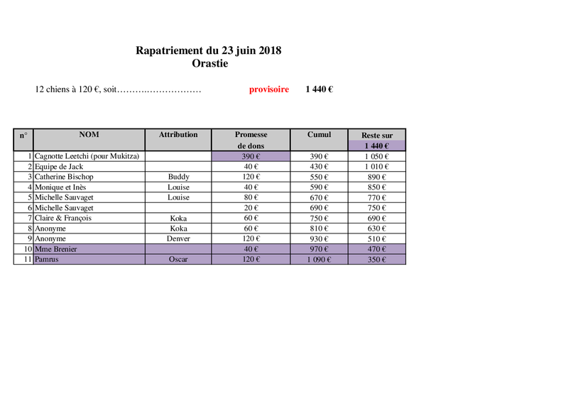 TRANSPORT CAMION ORASTIE ROUMANIE -Arrivée LIEGE le samedi 23 JUIN 2018 - Rapatr14