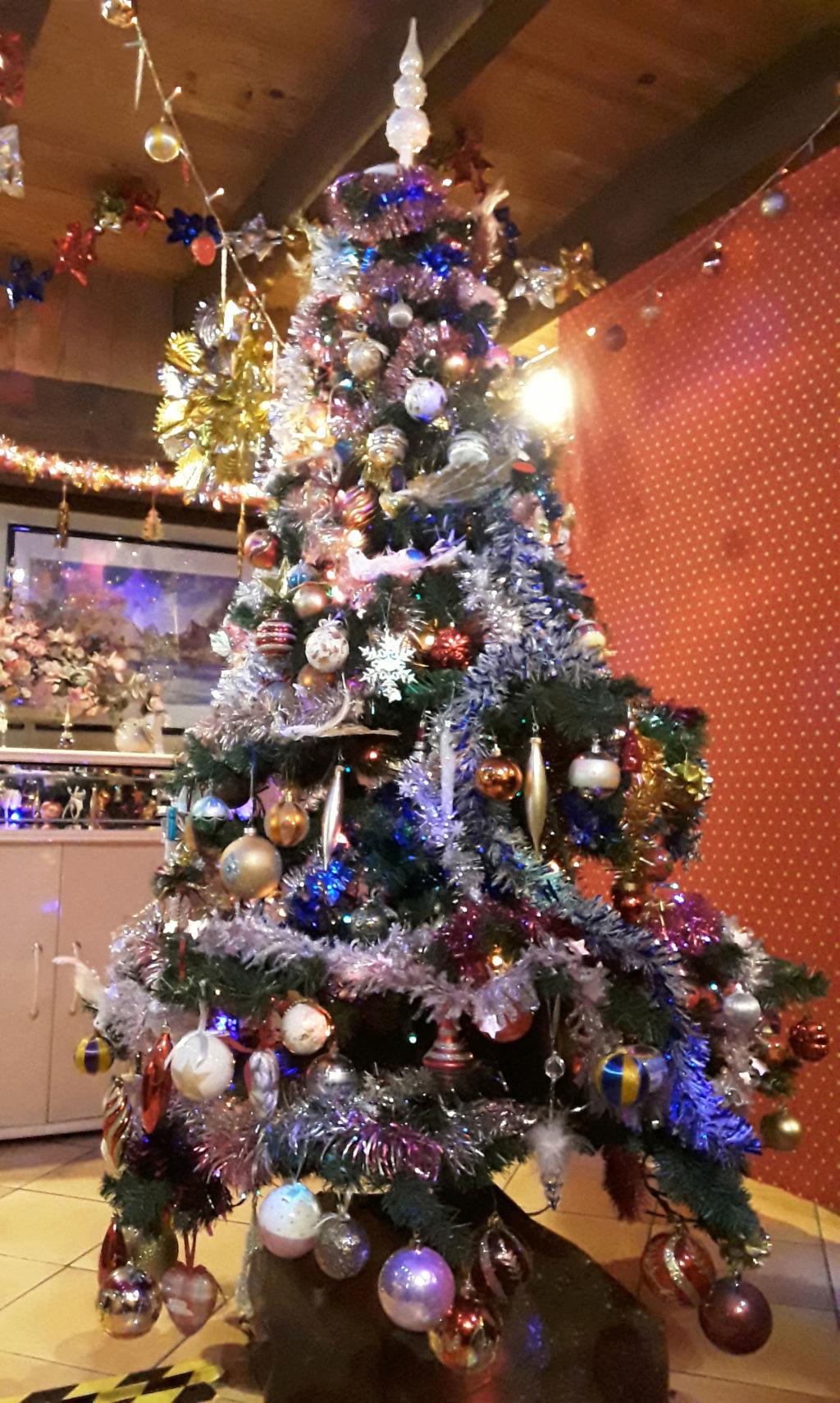 Nos sapins de Noel 20191210