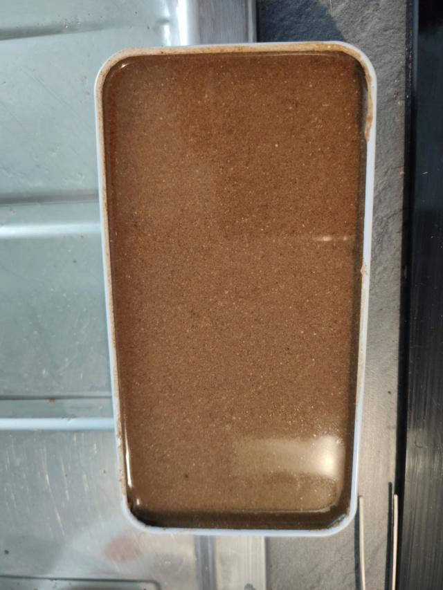 Test des poudres Repashy pour Pogona 67539910