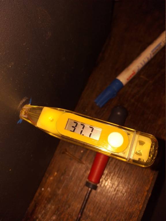 Thermomètre médical 20200212