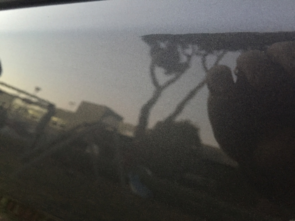 Polvere di ferro completamente aderita alla carrozzeria - Pagina 2 98c83110
