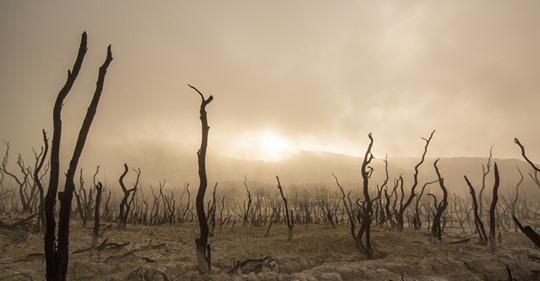 Notre civilisation pourrait s'effondrer avant 2050 Safe_i10
