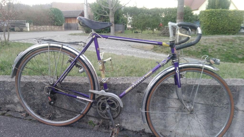 Peugeot Randonneur 1972 Viloet 15502413