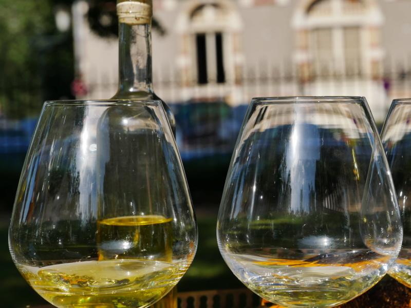 Festival du poivre :des épices :dégustation d huile colza P1040714