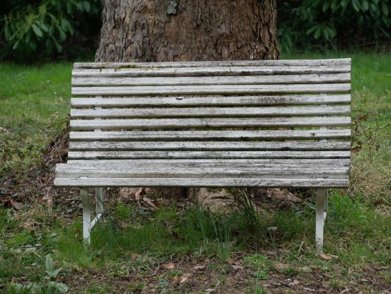Mais ou s'asseoir ?? P1060413