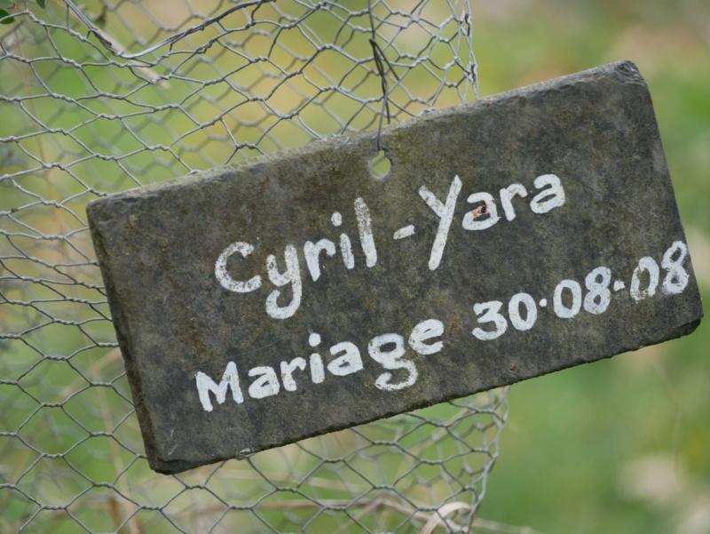 Témoin de mariage ? P1060415