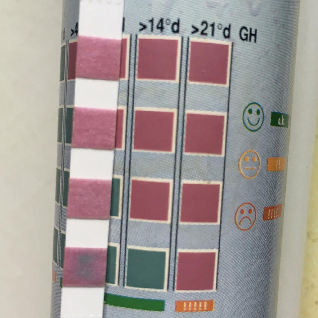 Quel filtre silencieux pour un bac de 10 L ? - Page 2 Gh10