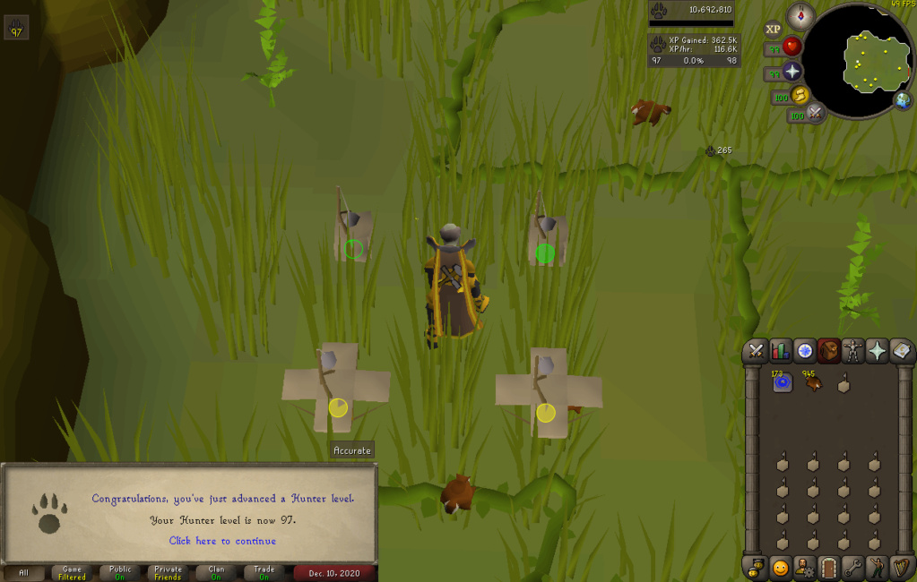 [13 pets] Stinger's post-max grind [Currently:Agility (20m+ exp)] Hunter10