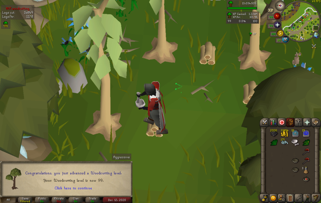[13 pets] Stinger's post-max grind [Currently:Agility (20m+ exp)] Woodcu11