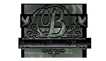 Description & Plan de la BAM Logo17