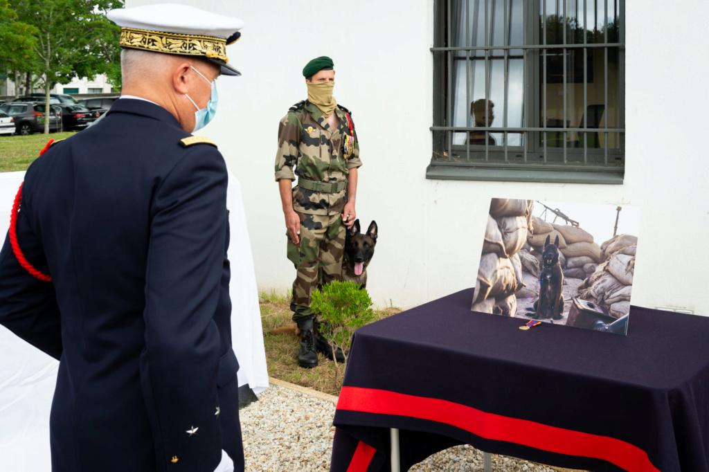 Stèle pour les chiens de la Marine Nationale 311