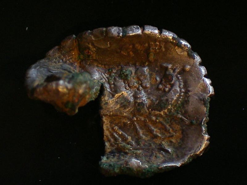 Les denier serratus fourrés Imgp6311