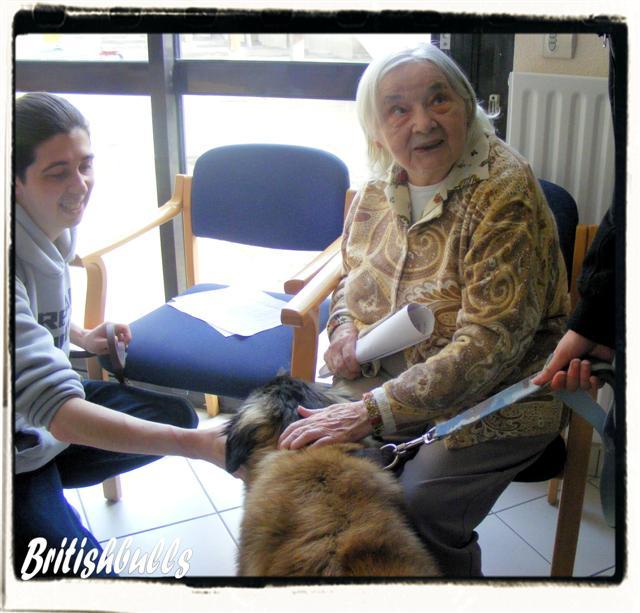 CAO et CHELSEA Estrela de 6 mois en maison de retraite hier Ponche10