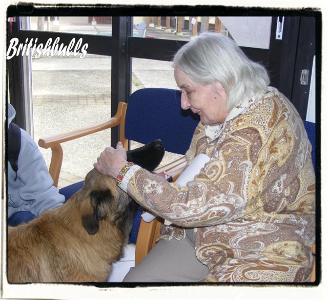 CAO et CHELSEA Estrela de 6 mois en maison de retraite hier Ponche11