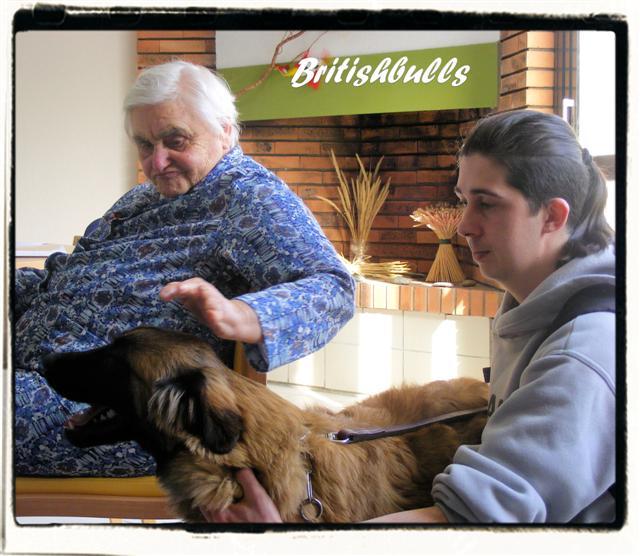 CAO et CHELSEA Estrela de 6 mois en maison de retraite hier Ponche12