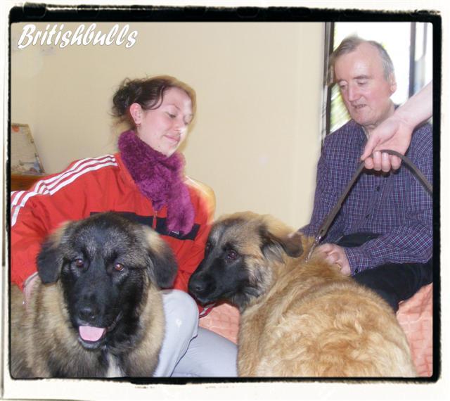 CAO et CHELSEA Estrela de 6 mois en maison de retraite hier Ponche19
