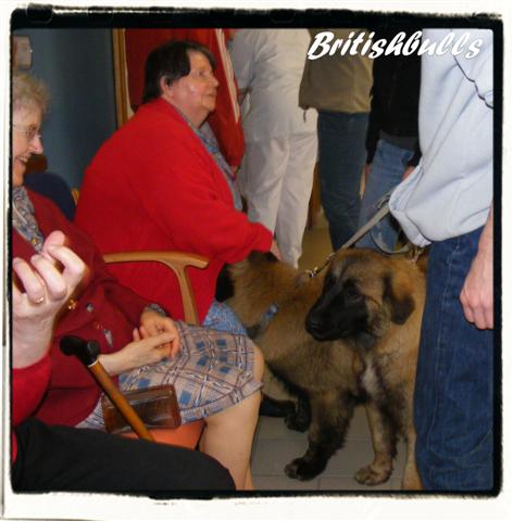 CAO et CHELSEA Estrela de 6 mois en maison de retraite hier Ponche22