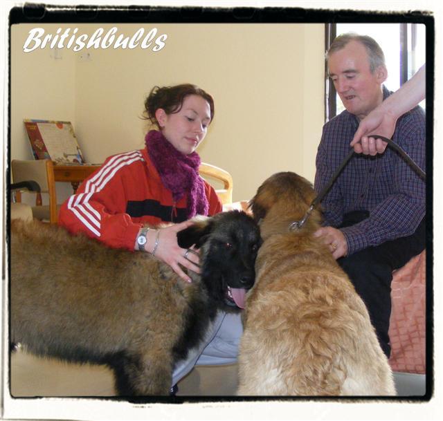 CAO et CHELSEA Estrela de 6 mois en maison de retraite hier Ponche25