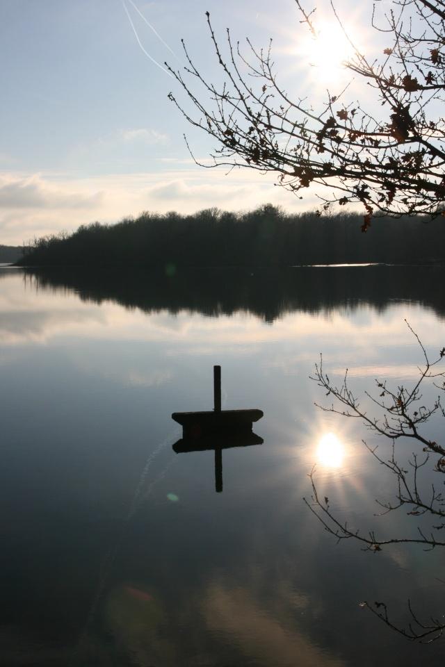 Lac de sologne Img_4611