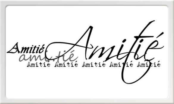 Mots ...mot en scrap 30 juin Amitia11