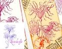 les nouveautés des elfes - Page 3 Fleurs10