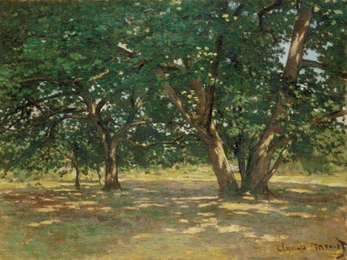 Claude Monet Fontai10