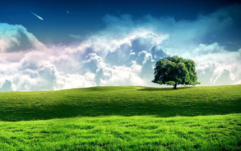 Les plus belles images du Web 5338710