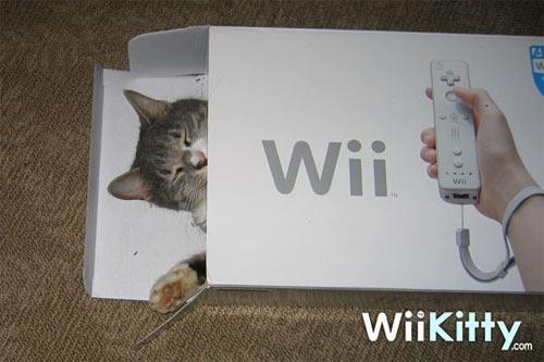 Mario Kart DS Wiikit10