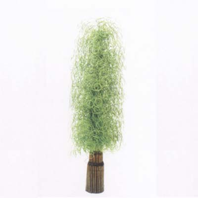 willow flower 02 2006_437