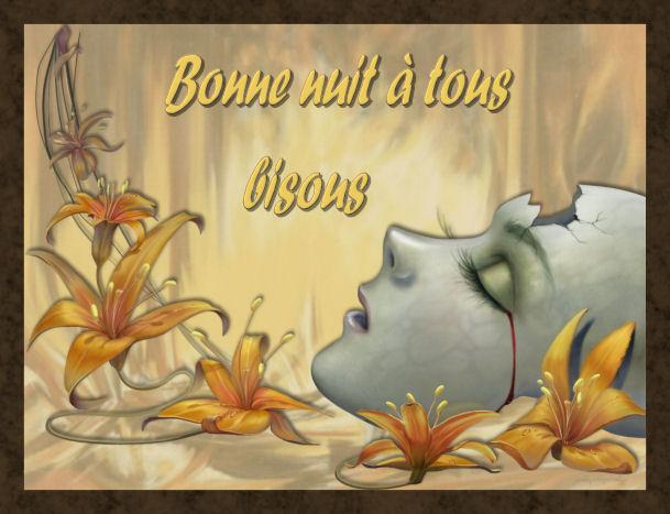 Bonjours - Page 4 Bonuit10