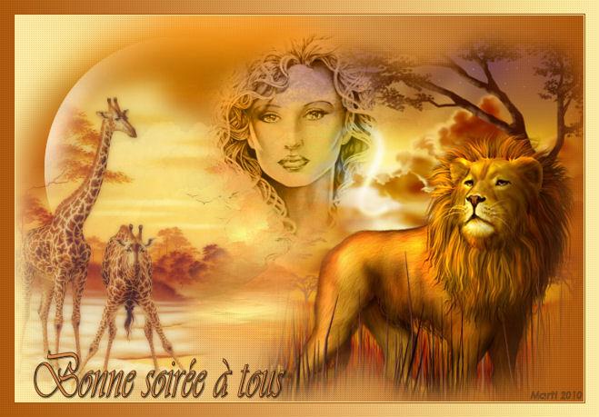 galerie de Marti Lions510