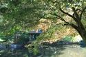 Parc Oriental - Maulévrier - Page 2 Maulev12