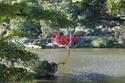 Parc Oriental - Maulévrier - Page 2 Maulev15
