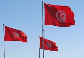 العلم التونسي 89489010