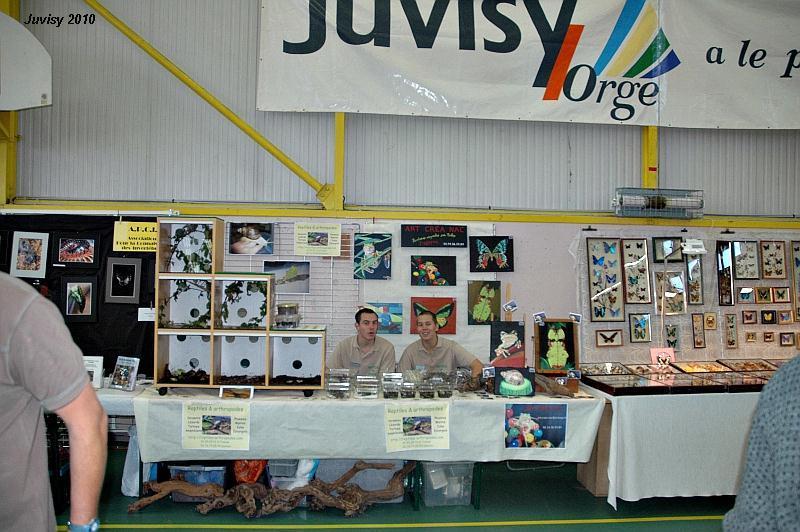 Bourse de Juvisy 2010 Juvisy10
