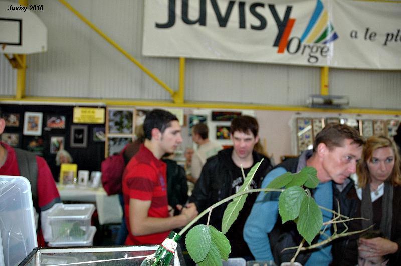 Bourse de Juvisy 2010 Juvisy11