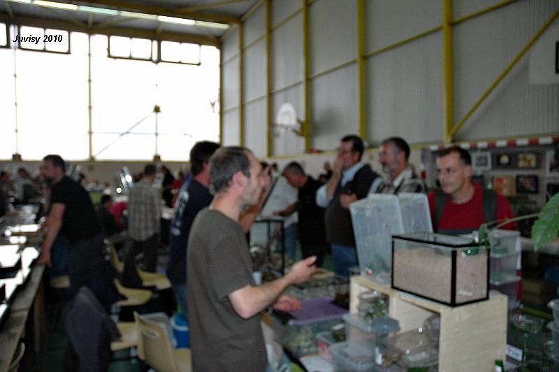 Bourse de Juvisy 2010 Juvisy12