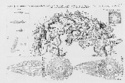 LC Jean-Marie Blas de Roblès : Là où les tigres sont chez eux. - Page 6 A524