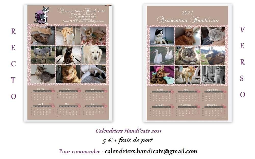 Calendriers 2021 Handi'Cats Cal10